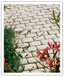 Pavés de terrasse Chinon - champagne - en pierre reconstituée